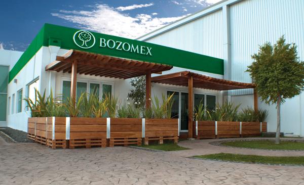Bozovich Mexico
